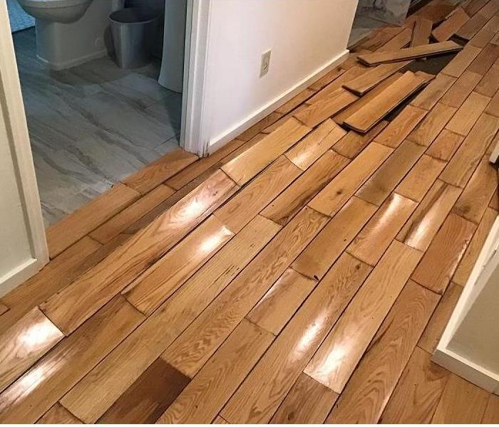 A lifted and buckled hardwood floor