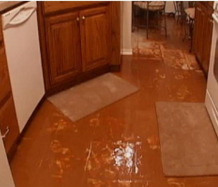 Water pooled in a kitchen from a dishwasher malfunction