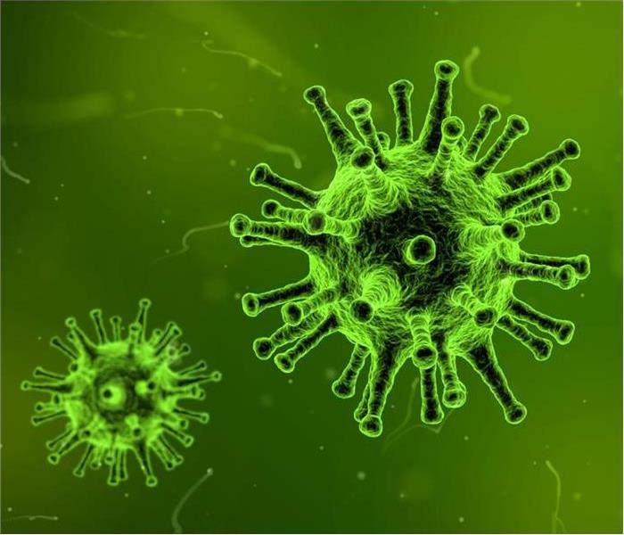 An image of black and bright green pathogens floating on a dark green background.