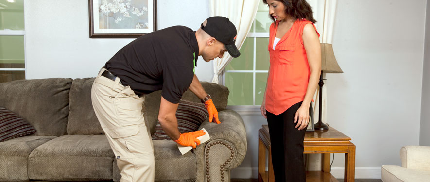 New Paltz, NY carpet upholstery cleaning