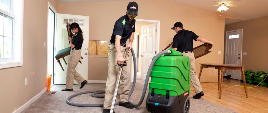 New Paltz, NY cleaning services